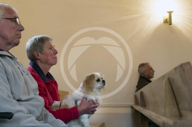 Kerkdienst met dieren