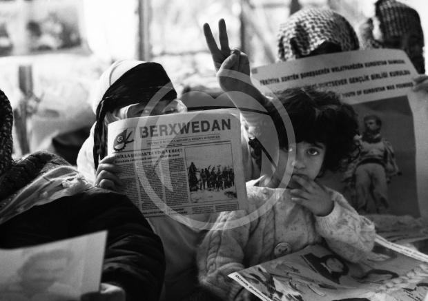 Koerden