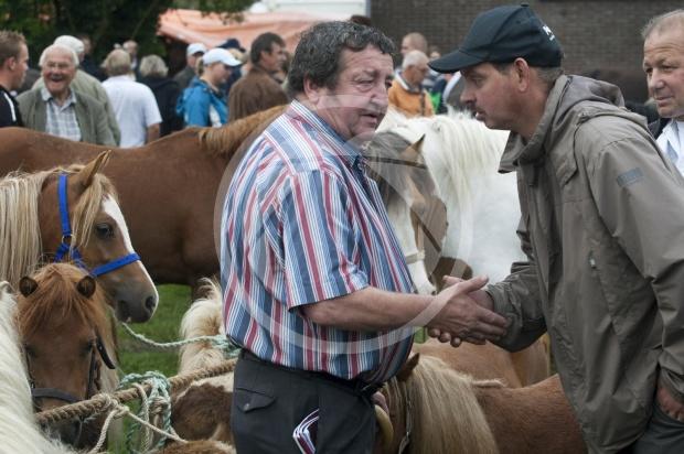 Loenense pony's en paardenmarkt.